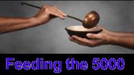 feeding-5000