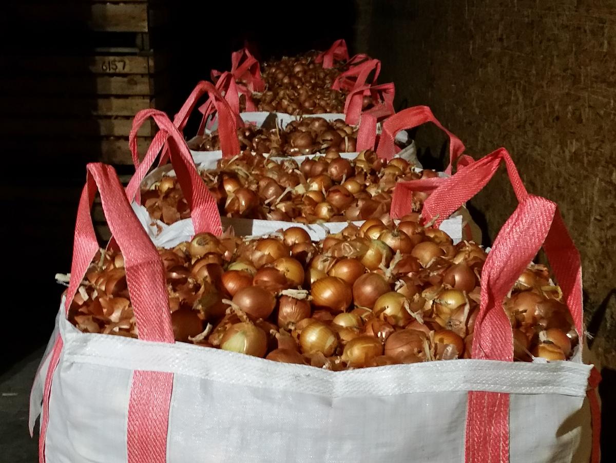 Idaho Food Bank Backpack Program